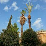 Acht dingen die ik leerde in Marokko