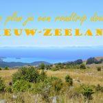 Hoe plan je een roadtrip door Nieuw-Zeeland?