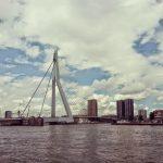 Rotterdam voor Dummies