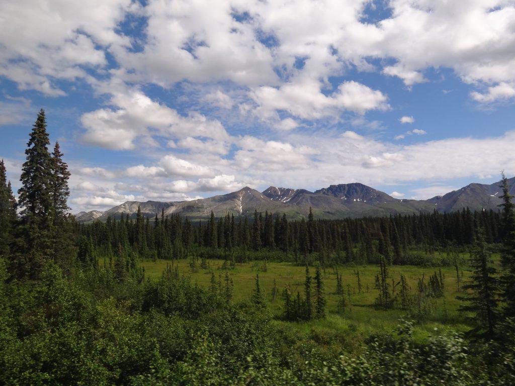 Typisch Alaska