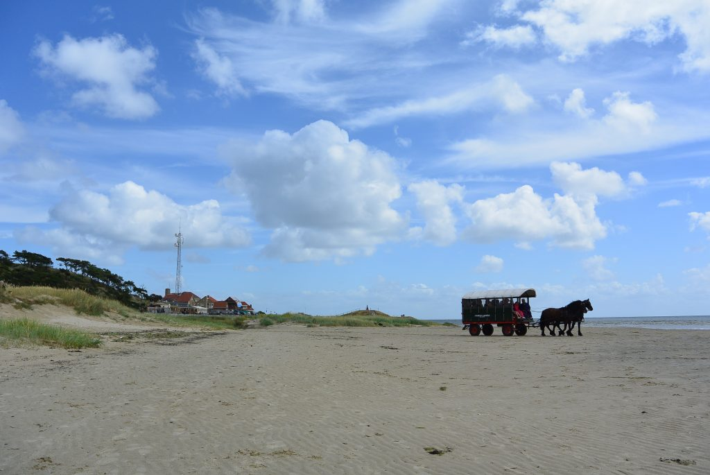 Just another Terschelling day...