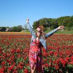 10x De mooiste natuurgebieden van Nederland